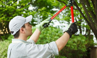 residential cleaning service melbourne